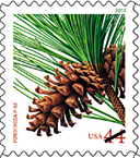 Holiday Evergreen Stamp