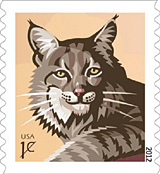Bobcat 1 cent stamp