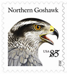 85 cent Birds of Prey stamps pay the First Class three-ounce rate