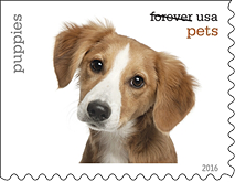 Pets Stamps, USPS 2016