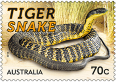 Australia Things that Sting Stamps 2014 - Tiger Snake Stamp 70 cents