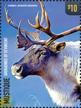 IGPC - Rossica - Animals of the Tundra Stamp