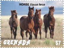 IGPC Stamps - Donkey and Horses Stamps, Grenada 2018