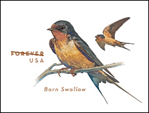 USPS Barn Swallow envelope 2017