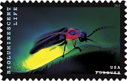 Bioluminescent Life Stamp - Biolouminescent Firefly Stamp, USPS 2018