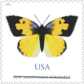 USPS - California Dogface - Butteryfly Stamp 2019